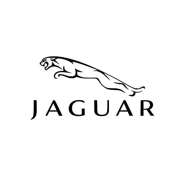 Jaguar Fragrance Products in Kenya